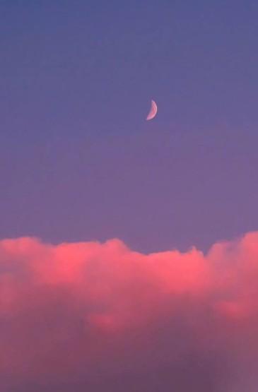 粉紫色美丽风光无水印手机壁纸