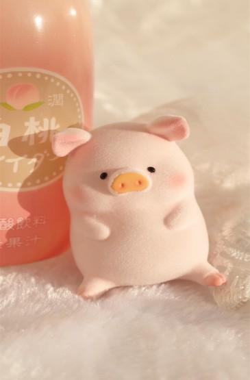 可爱呆萌的小猪静物图片手机壁纸
