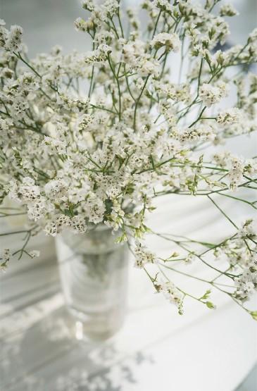 花瓶中的花卉静物图片手机壁纸