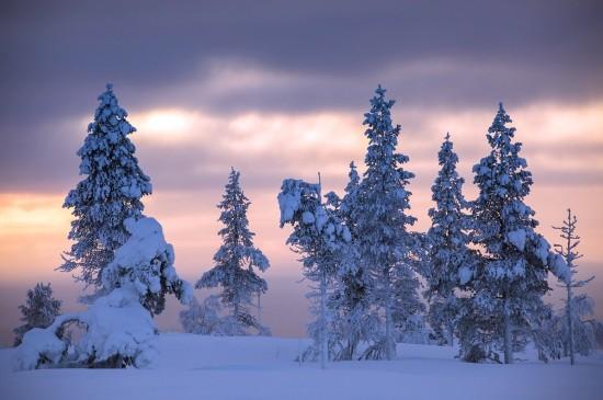 <冬季唯美雪景高清电脑壁纸