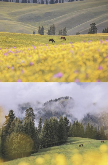 小清新自然田園風光手機