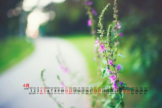 <2020年4月自然风光美景桌面日历壁纸