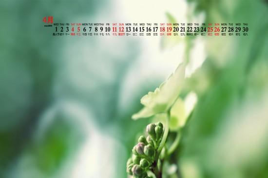 2020年4月美麗植物清新桌面日歷壁紙