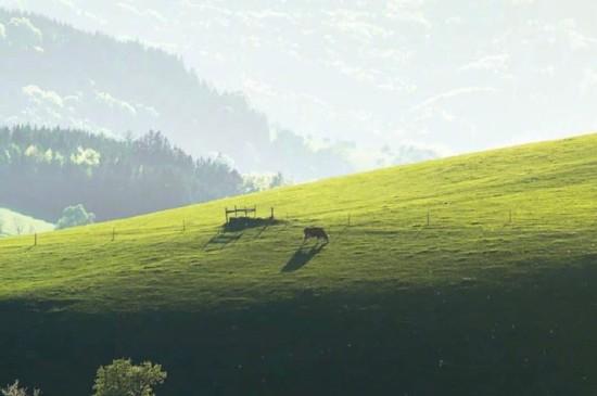 奥地利唯美护眼风景桌面