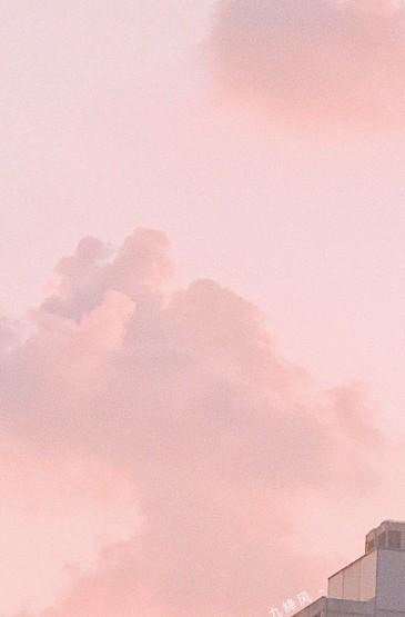 粉色调文艺花卉风景手机壁纸