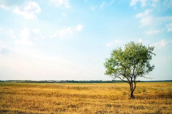 <唯美日落自然风景桌面壁纸