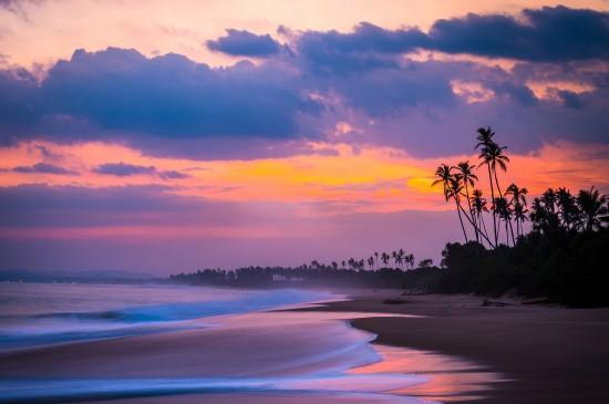 <森林山谷雾高清风景桌面壁纸