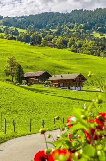 瑞士宁静之美小清新绿色手机壁纸 第一辑